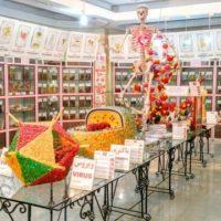 موزه دانشگاه شهید چمران؛ موزهای به وسعت عجایب علمی + تصاویر
