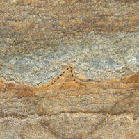 قدیمی ترین فسیل های زمین فقط سنگ هستند