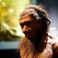 دخالت انسان ها در انقراض نئاندرتال ها رد شد