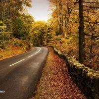 چهارمین جاده زیبای جهان ٨٥ ساله شد/ جاده چالوس پیر نمیشود