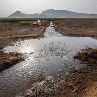 آبهای سطحی میتواند به ابنیه تاریخی نیز آسیب برساند