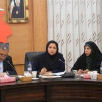 جلسه ستاد اجرایی خدمات سفر استان بوشهر برگزار شد
