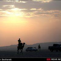 یک جهانگرد هرمزگانی با شتر به دور دنیا می رود