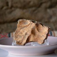 جمجمه انسان هوشمند کشف شده در غار «کلدر» خرمآباد رونمایی شد