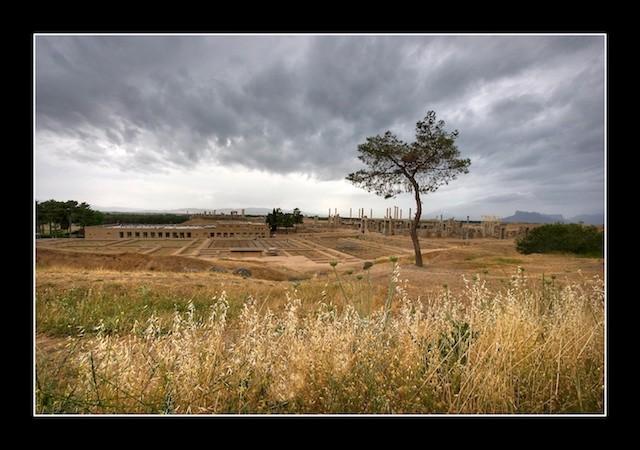 عکس های تخت جمشید (پارسه)- هخامنشیان - ایران باستان - 3